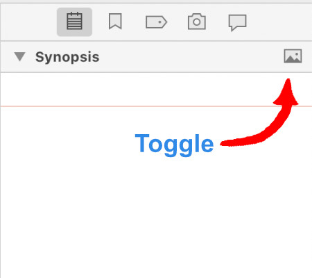 Synopsis Toggle